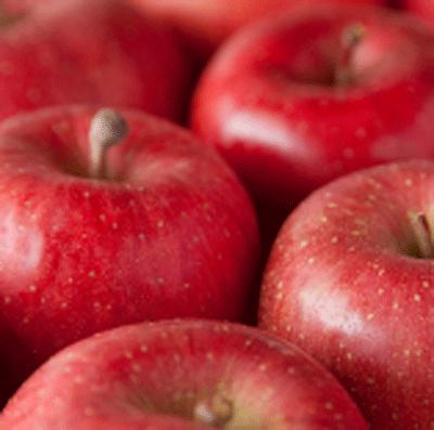 蘋果培養細胞菁華預防痘痘進而看起來更年輕