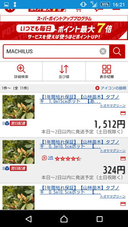MACHILUSの販売価格2