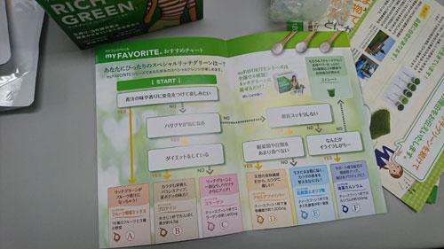 リッチグリーンのパンフレット