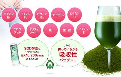 リッチグリーンの栄養素