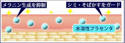 水溶性プラセンタ