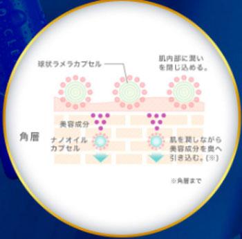 ナノクリアの美肌になるメカニズム2