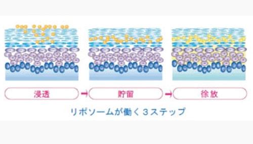HITOYURAI+30のCDS浸透技術