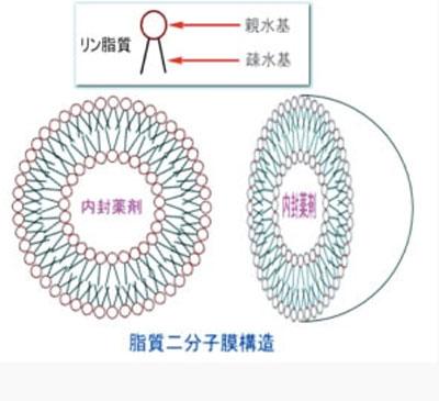HITOYURAI+30のナノカプセル技術