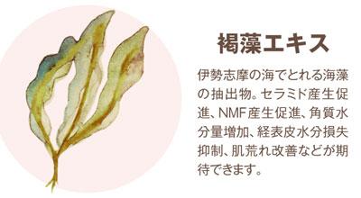 褐藻エキス