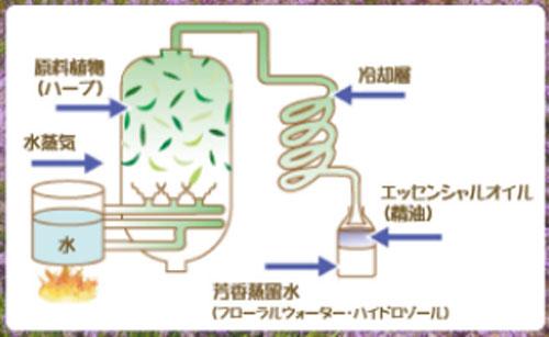 水蒸気蒸留法について