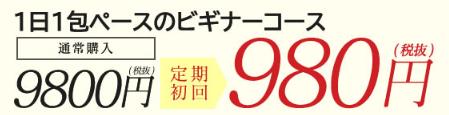 ホワイトプロテクトの毎月1袋の定期コースの価格