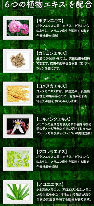 BEQUA(ビキュア)は6つの植物エキスを配合