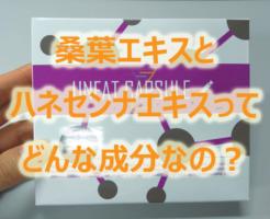 アンファットカプセルに含まれる桑葉エキスとハネセンナエキスって何?どんな効果があるの?