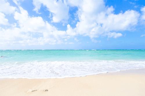 どちらの成分も海からとれる天然の成分