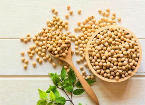ジョモックスに含まれる【大豆エキス】の効果を詳しく紹介します